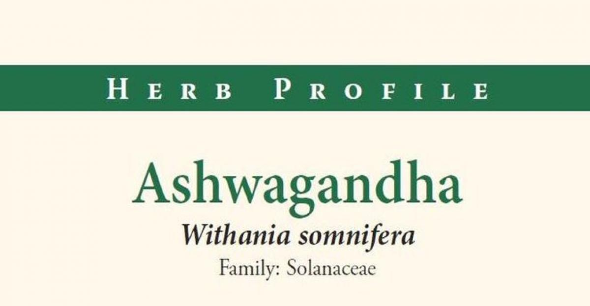 American Botanical Council Herb Profile: Ashwagandha